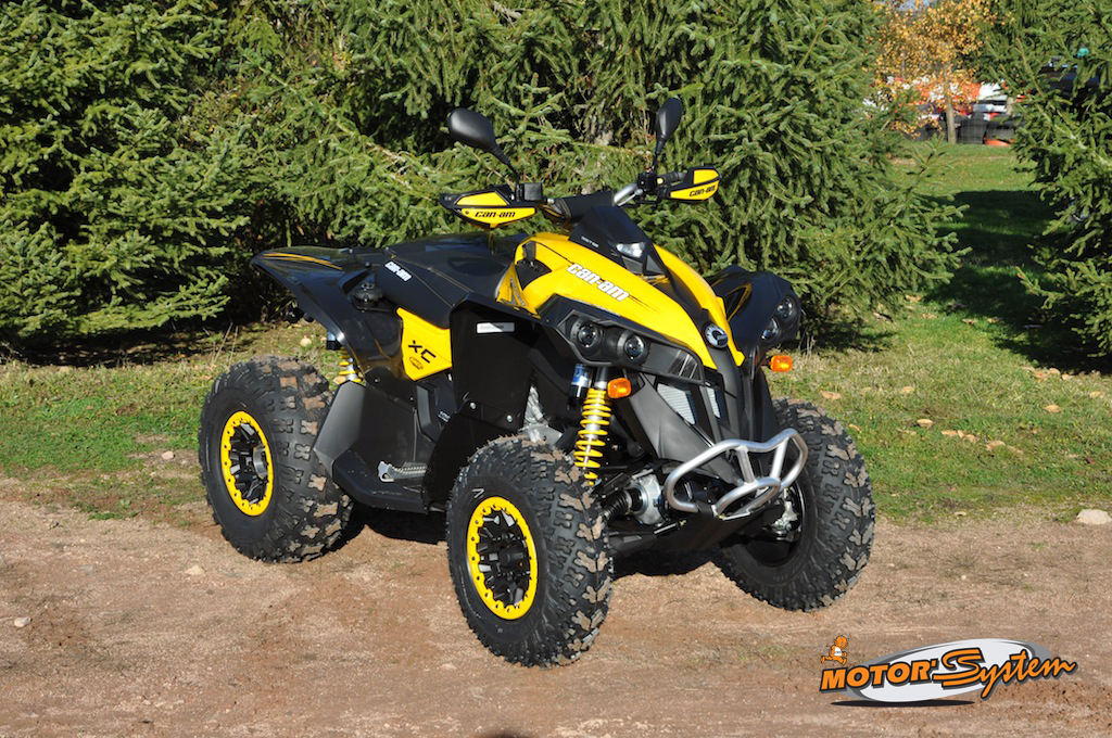 Can  Can Am Renegade 1000