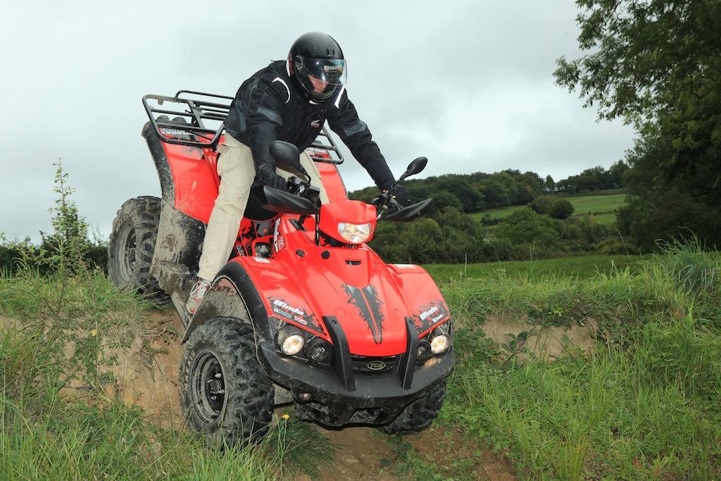 Rando quad Motor system 1-8870